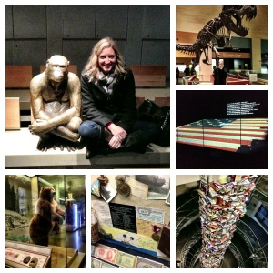 "Just ""Monkeying around"" at the Museum of Natural History, our visit to the American History Museum, and the house where Lincoln died (and some of the 15,000+ books written about Lincoln).  Also ""Kilroy was here"" written by someone in a letter at the Air and Space Museum (which made me very happy!)"