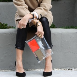 Damsel in Dior Clear Clutch